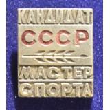 """ЗНАК """"КАНДИДАТ МАСТЕР СПОРТА СССР"""""""